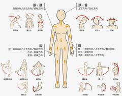 ラブドール骨格の動かし方